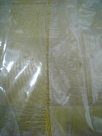 20090129 透明と梨地.jpg